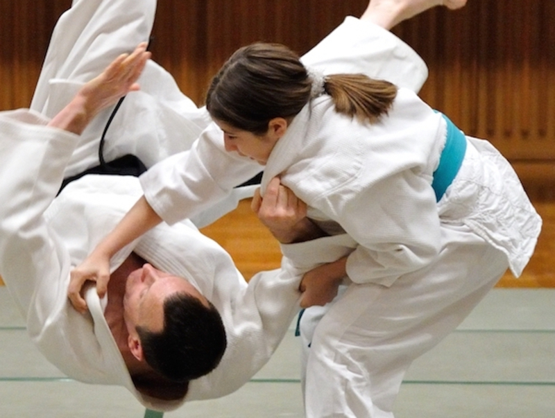 Support the International Nihon Jujutsu Association (INJA) |